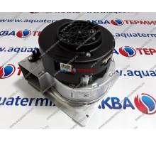 Вентилятор PROTHERM Пантера 35 KTV H-RU (0020200682)